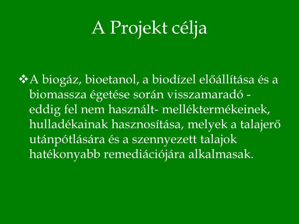 A Projekt célja Bővebben:  A hulladékok és melléktermékek irányított komposztálási technológiájának kifejlesztése, hazai és nemzetközi szabadalmának bejelentése.