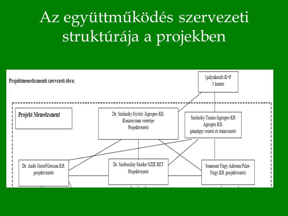 Az együttműködés szervezeti struktúrája a projekben