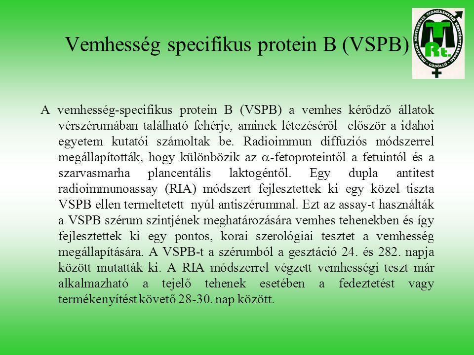 Vemhesség specifikus protein B (VSPB) A vemhesség-specifikus protein B (VSPB) a vemhes kérődző állatok vérszérumában található fehérje, aminek létezés