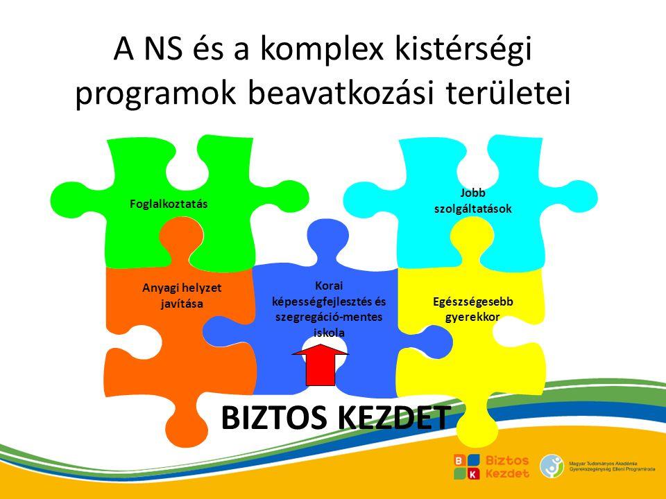 A NS és a komplex kistérségi programok beavatkozási területei Korai képességfejlesztés és szegregáció-mentes iskola Anyagi helyzet javítása Foglalkoztatás Egészségesebb gyerekkor Jobb szolgáltatások BIZTOS KEZDET
