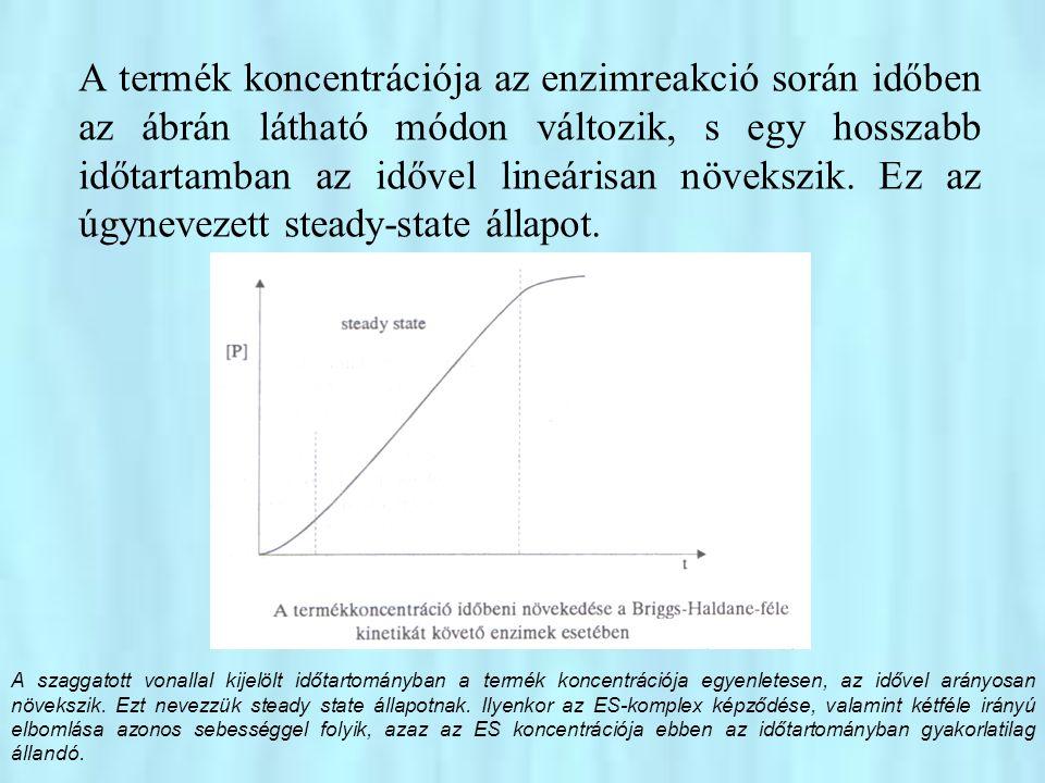 Az ES komplex koncentrációja három reakció sebességétől függ, azaz A steady-state állapotban az ES komplex képződésének a sebessége megegyezik a disszociációjának + a termék kialakulásának a sebességével, vagyis az ES koncentrációja hosszabb időtartamban nem változik: