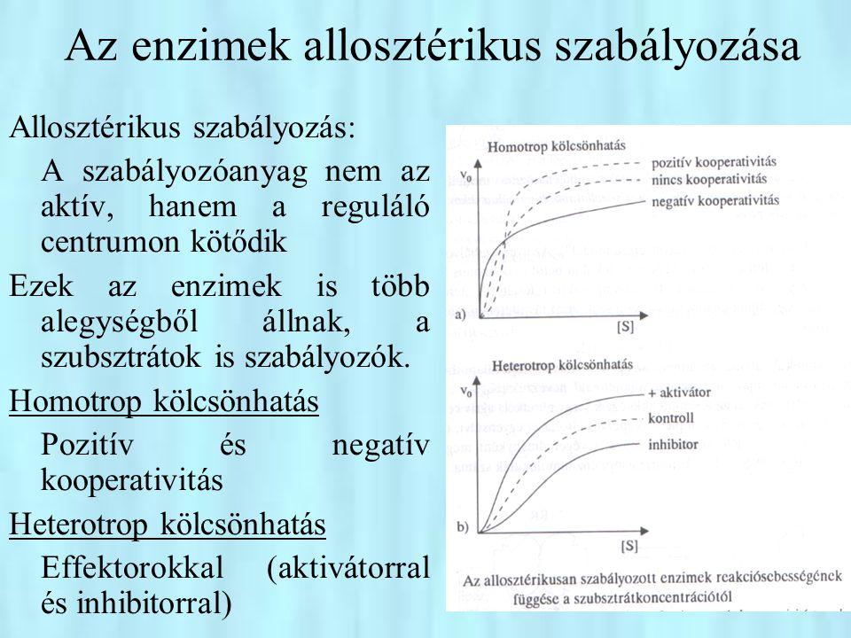 •Magyarázat: a szubsztrát vagy effektor hatására bekövetkező konformációváltozás következménye a hatás •Szekvenciális mechanizmus a megkötődő szubsztrát megváltoztatja annak az alegységnek a konformációját, amelyhez kötődött (induced fit) •Összehangolt mechanizmus (concerted model) minden alegység csak azonos konformációban lehet, vagy aktív (relaxed, R) ←aktivátor kötő vagy inaktív (feszített, tensed, T) ←inhibitor ide kötődik Animáció