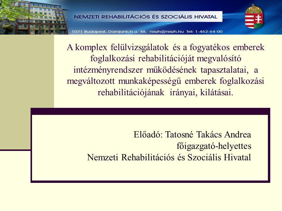A komplex felülvizsgálatok és a fogyatékos emberek foglalkozási rehabilitációját megvalósító intézményrendszer működésének tapasztalatai, a megváltozo