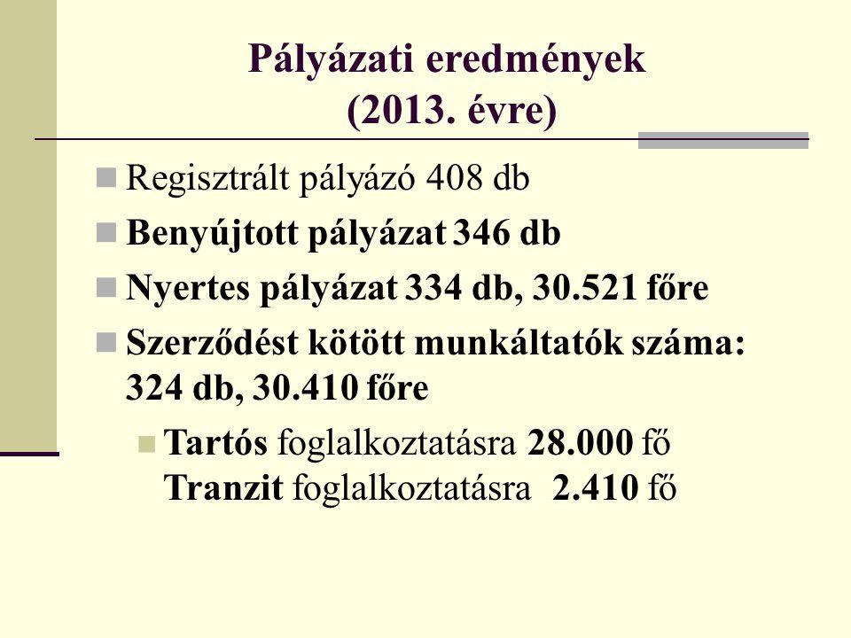 Pályázati eredmények (2013. évre)  Regisztrált pályázó 408 db  Benyújtott pályázat 346 db  Nyertes pályázat 334 db, 30.521 főre  Szerződést kötött