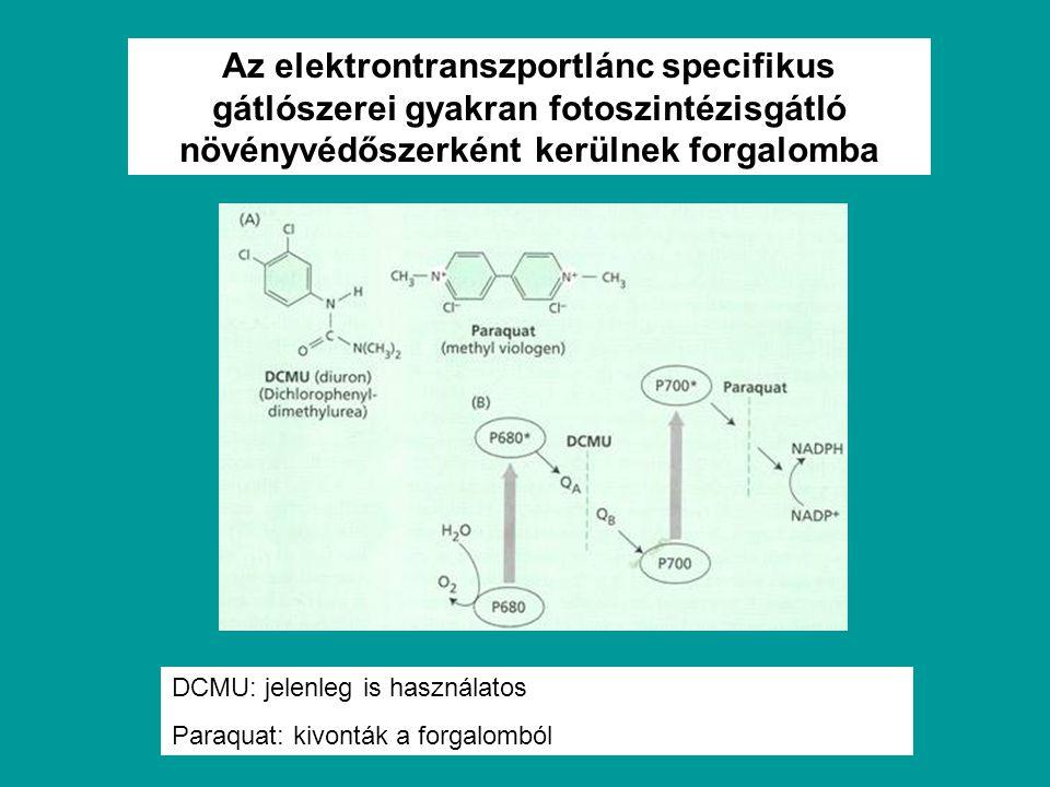 Az elektrontranszportlánc specifikus gátlószerei gyakran fotoszintézisgátló növényvédőszerként kerülnek forgalomba DCMU: jelenleg is használatos Paraq
