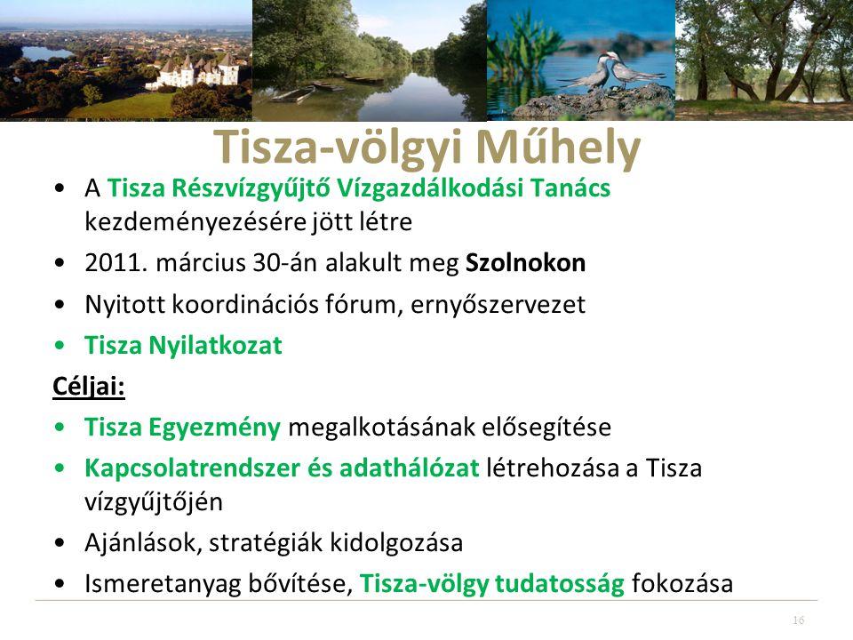 Tisza-völgyi Műhely •A Tisza Részvízgyűjtő Vízgazdálkodási Tanács kezdeményezésére jött létre •2011.