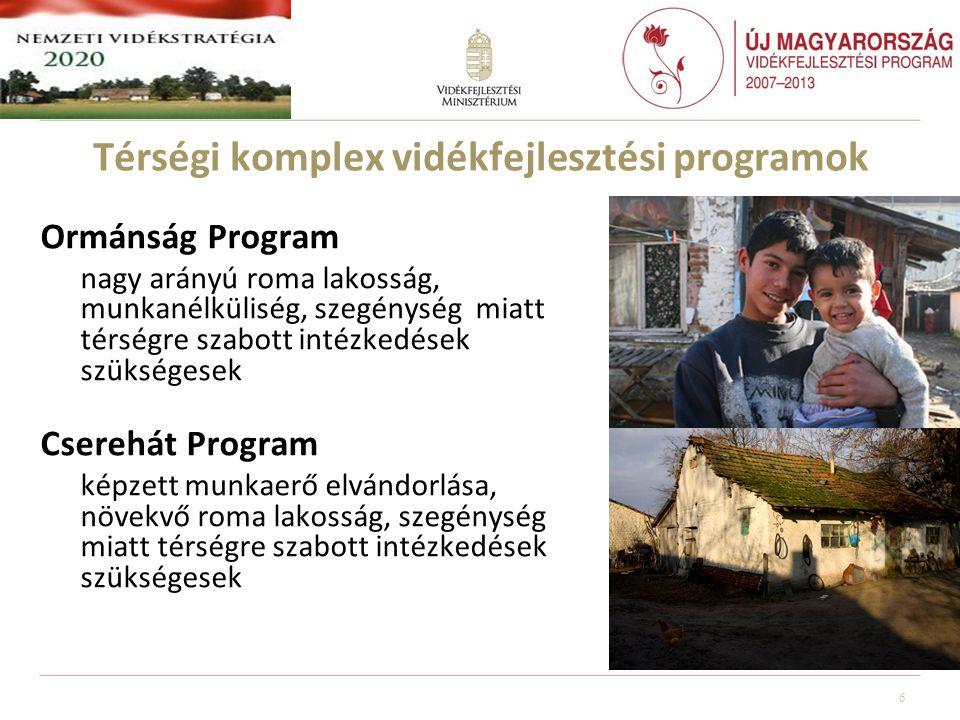 Térségi komplex vidékfejlesztési programok Ormánság Program nagy arányú roma lakosság, munkanélküliség, szegénység miatt térségre szabott intézkedések szükségesek Cserehát Program képzett munkaerő elvándorlása, növekvő roma lakosság, szegénység miatt térségre szabott intézkedések szükségesek 6