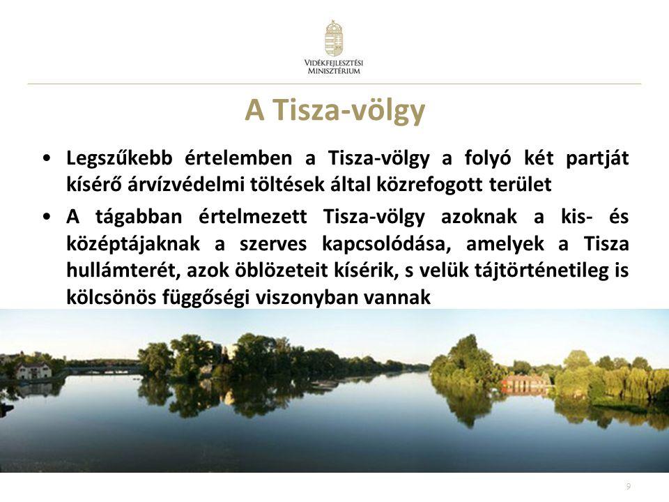A Tisza-völgy •Legszűkebb értelemben a Tisza-völgy a folyó két partját kísérő árvízvédelmi töltések által közrefogott terület •A tágabban értelmezett Tisza-völgy azoknak a kis- és középtájaknak a szerves kapcsolódása, amelyek a Tisza hullámterét, azok öblözeteit kísérik, s velük tájtörténetileg is kölcsönös függőségi viszonyban vannak 9