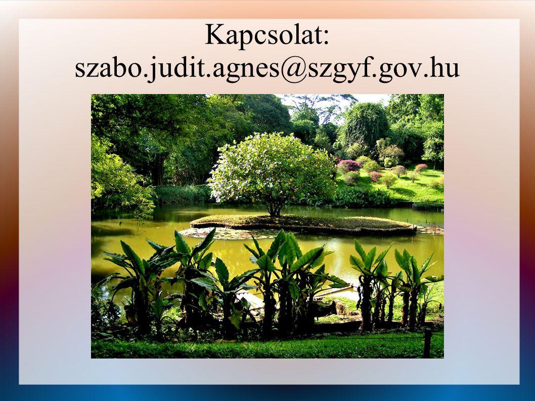 Kapcsolat: szabo.judit.agnes@szgyf.gov.hu