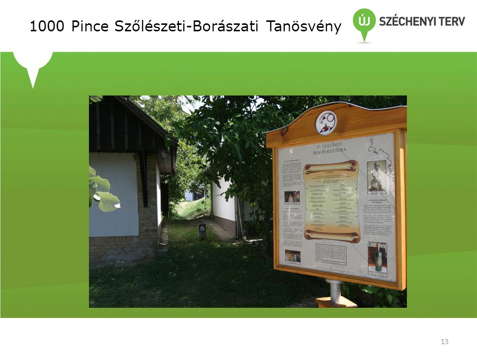1000 Pince Szőlészeti-Borászati Tanösvény 13