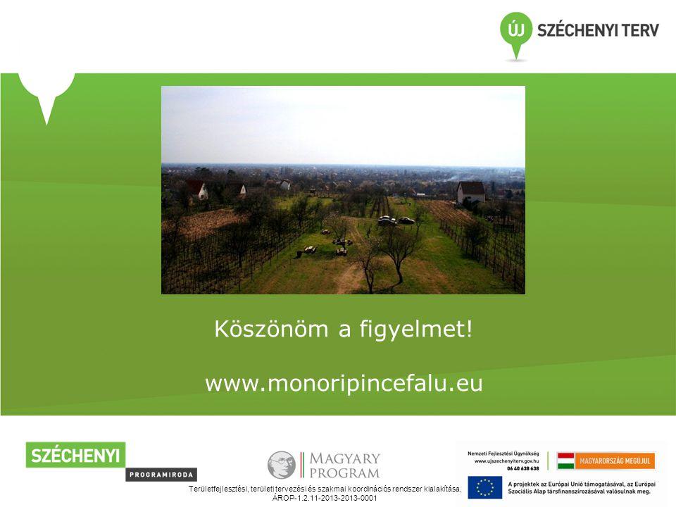 Területfejlesztési, területi tervezési és szakmai koordinációs rendszer kialakítása, ÁROP-1.2.11-2013-2013-0001 Köszönöm a figyelmet.