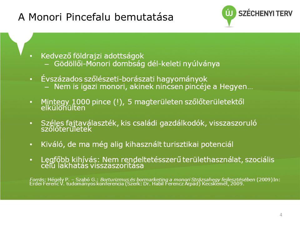 Pince típusok a Monori Pincefaluban 5 1995-ben volt az első átfogó építészeti felmérés • Hat épülettípus • 98 építészetileg értékes, eredeti állapotában megőrzött, további 132 részben átalakított, de építészetileg értékes • 2011-es felmérés szerint 20% elhanyagolt, romos
