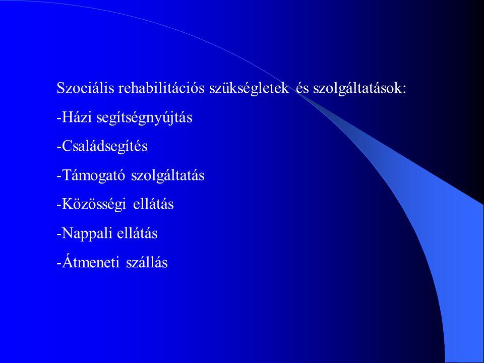 Szociális rehabilitációs szükségletek és szolgáltatások: -Házi segítségnyújtás -Családsegítés -Támogató szolgáltatás -Közösségi ellátás -Nappali ellátás -Átmeneti szállás