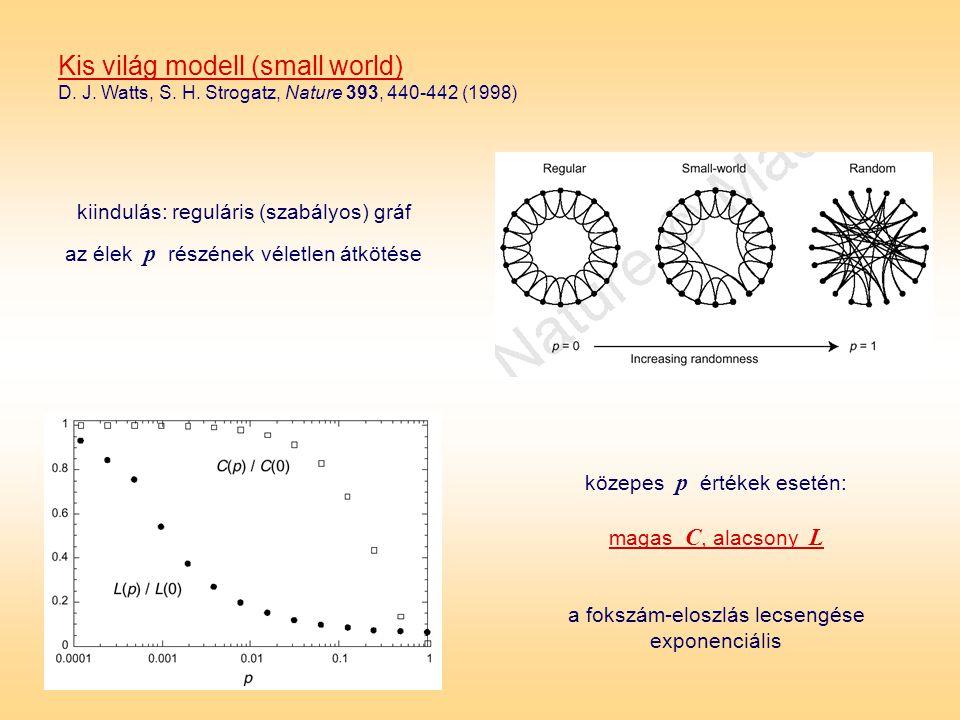 Kis világ modell (small world) D. J. Watts, S. H. Strogatz, Nature 393, 440-442 (1998) kiindulás: reguláris (szabályos) gráf az élek p részének véletl