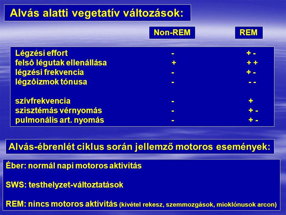 Alvás alatti vegetatív változások: Non-REM REM Légzési effort - + - felsô légutak ellenállása + + + légzési frekvencia - + - légzôizmok tónusa - - - szívfrekvencia - + szisztémás vérnyomás - + - pulmonális art.