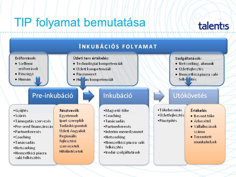 TIP folyamat bemutatása