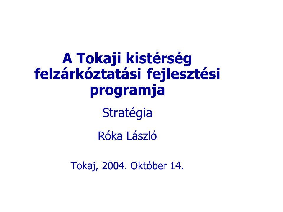 A Tokaji kistérség felzárkóztatási fejlesztési programja Stratégia Róka László Tokaj, 2004.