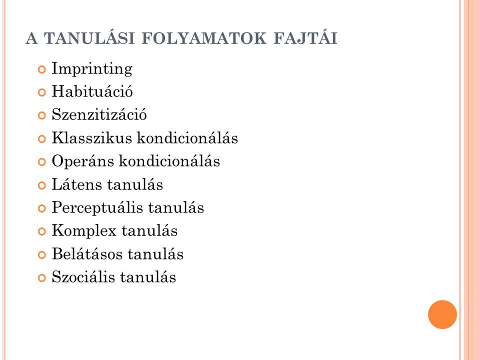 A TANULÁSI FOLYAMATOK FAJTÁI Imprinting Habituáció Szenzitizáció Klasszikus kondicionálás Operáns kondicionálás Látens tanulás Perceptuális tanulás Ko