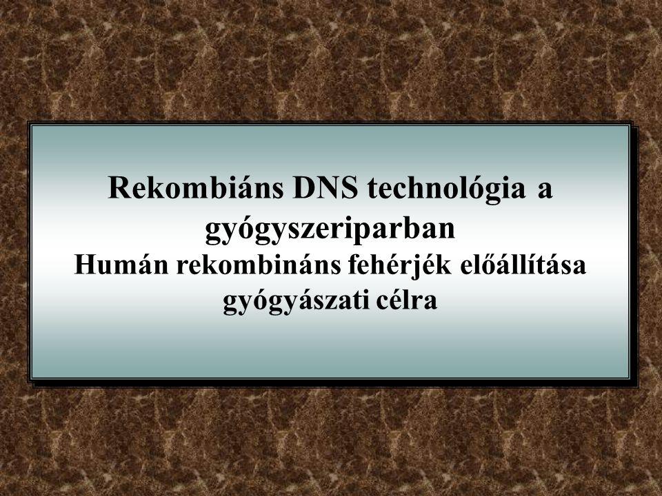 Rekombiáns DNS technológia a gyógyszeriparban Humán rekombináns fehérjék előállítása gyógyászati célra Rekombiáns DNS technológia a gyógyszeriparban H