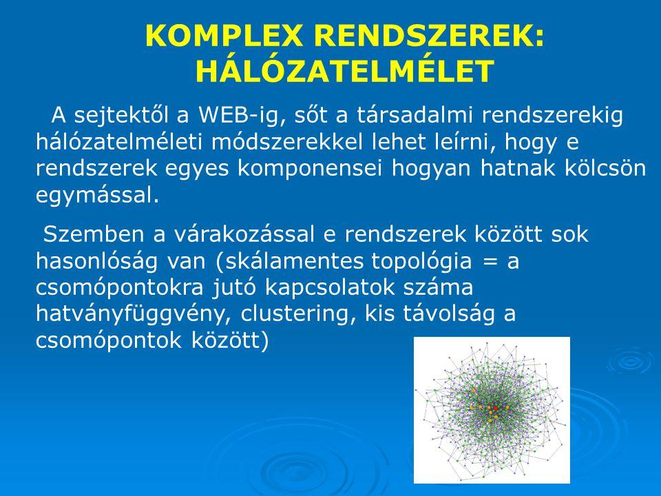KOMPLEX RENDSZEREK: HÁLÓZATELMÉLET A sejtektől a WEB-ig, sőt a társadalmi rendszerekig hálózatelméleti módszerekkel lehet leírni, hogy e rendszerek egyes komponensei hogyan hatnak kölcsön egymással.
