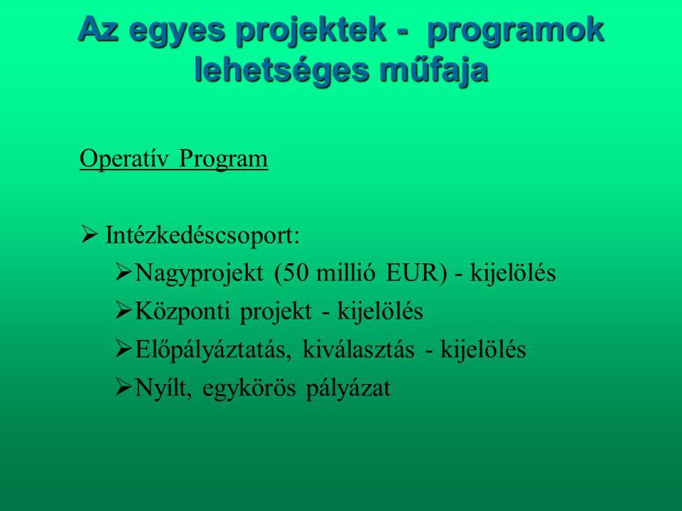 Az egyes projektek - programok lehetséges műfaja Operatív Program  Intézkedéscsoport:  Nagyprojekt (50 millió EUR) - kijelölés  Központi projekt -