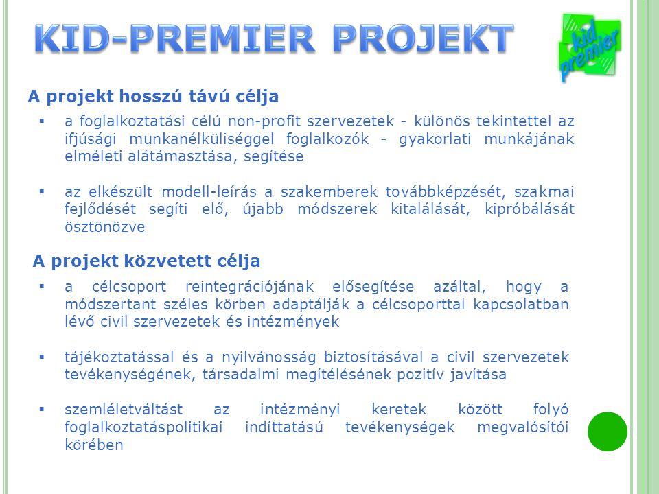 A projekt hosszú távú célja  a foglalkoztatási célú non-profit szervezetek - különös tekintettel az ifjúsági munkanélküliséggel foglalkozók - gyakorl