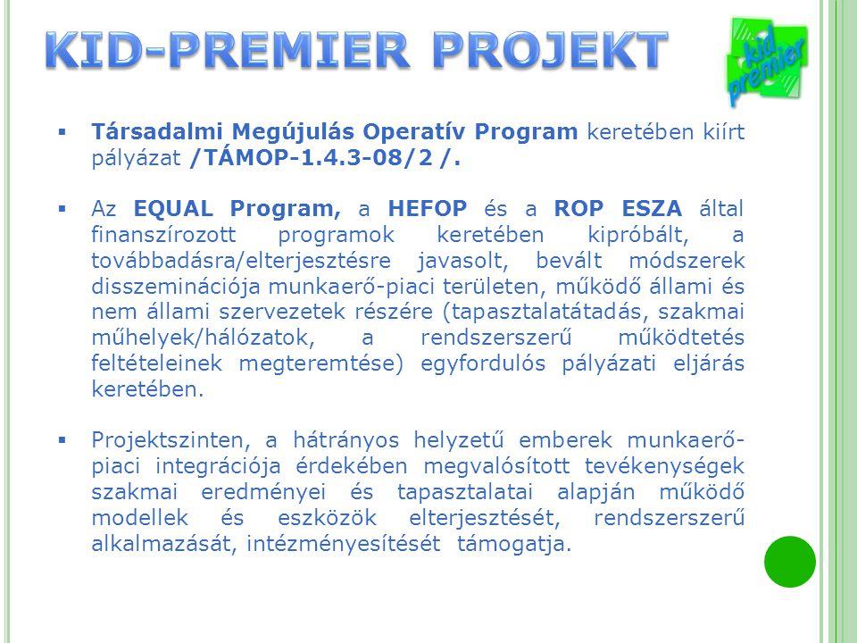 Társadalmi Megújulás Operatív Program keretében kiírt pályázat /TÁMOP-1.4.3-08/2 /.  Az EQUAL Program, a HEFOP és a ROP ESZA által finanszírozott p