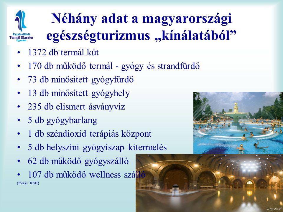 """Néhány adat a magyarországi egészségturizmus """"kínálatából"""" •1372 db termál kút •170 db működő termál - gyógy és strandfürdő •73 db minősített gyógyfür"""