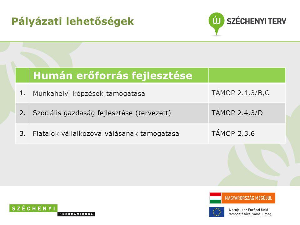 Pályázati lehetőségek Humán erőforrás fejlesztése 1. Munkahelyi képzések támogatása TÁMOP 2.1.3/B,C 2.Szociális gazdaság fejlesztése (tervezett)TÁMOP
