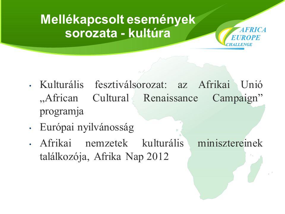 """Mellékapcsolt események sorozata - kultúra • Kulturális fesztiválsorozat: az Afrikai Unió """"African Cultural Renaissance Campaign"""" programja • Európai"""