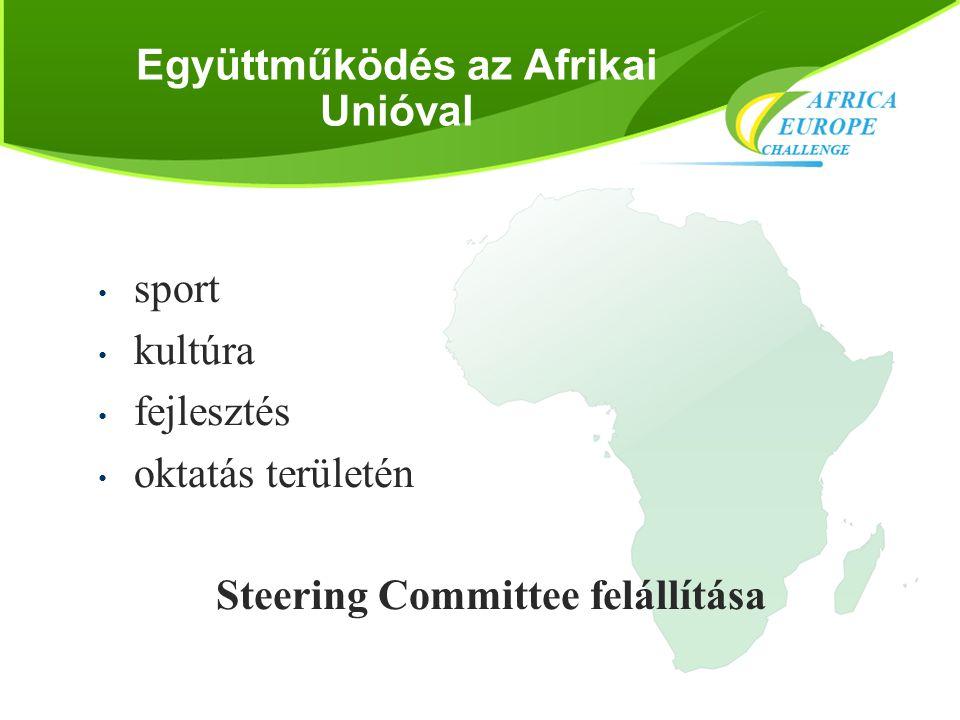 """Mellékapcsolt események sorozata - kultúra • Kulturális fesztiválsorozat: az Afrikai Unió """"African Cultural Renaissance Campaign programja • Európai nyilvánosság • Afrikai nemzetek kulturális minisztereinek találkozója, Afrika Nap 2012"""