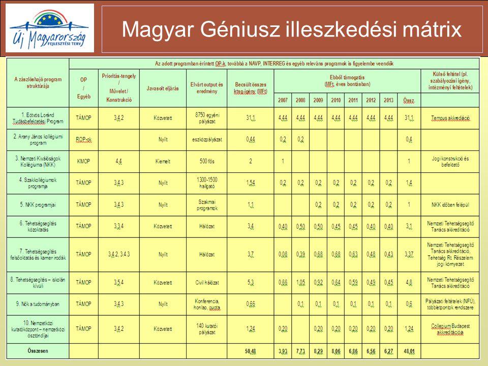 10 Magyar Géniusz illeszkedési mátrix