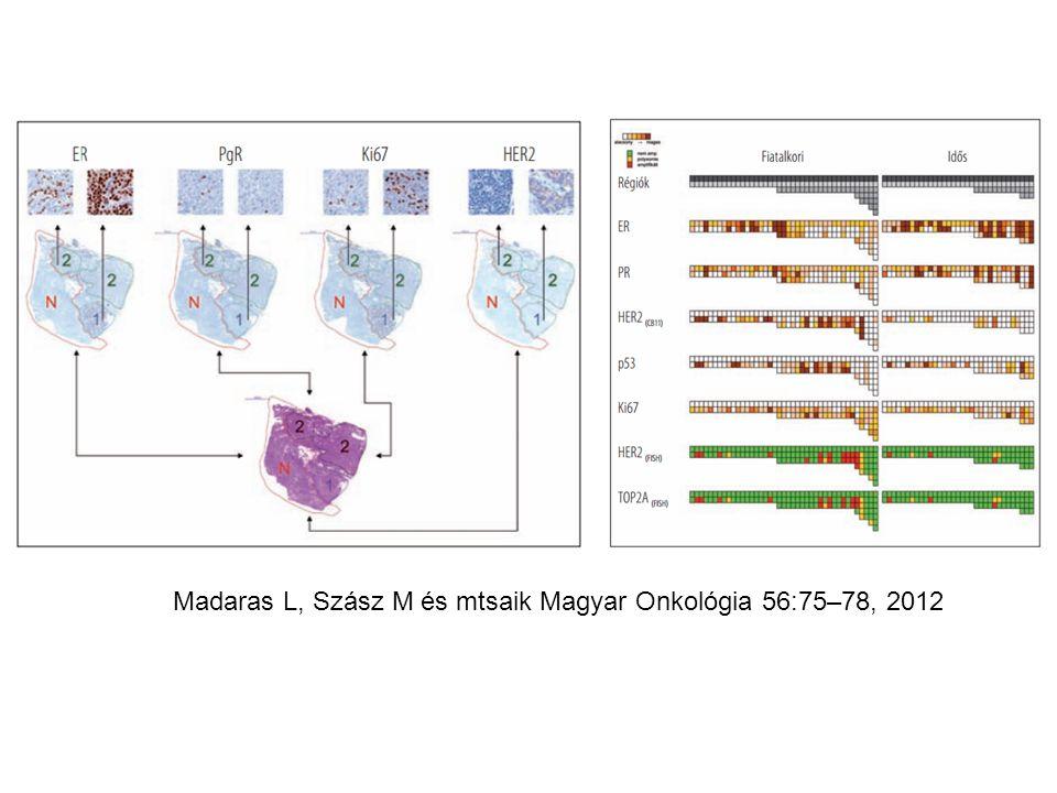 Madaras L, Szász M és mtsaik Magyar Onkológia 56:75–78, 2012