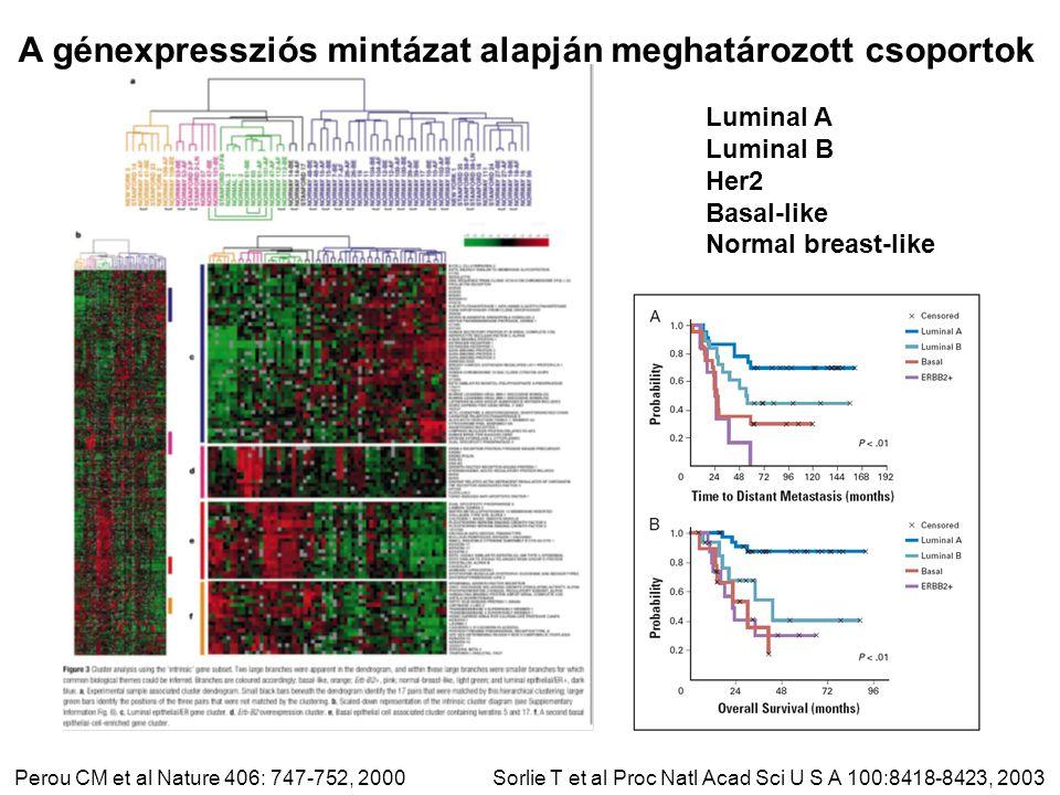 Perou CM et al Nature 406: 747-752, 2000 Luminal A Luminal B Her2 Basal-like Normal breast-like A génexpressziós mintázat alapján meghatározott csoportok Sorlie T et al Proc Natl Acad Sci U S A 100:8418-8423, 2003