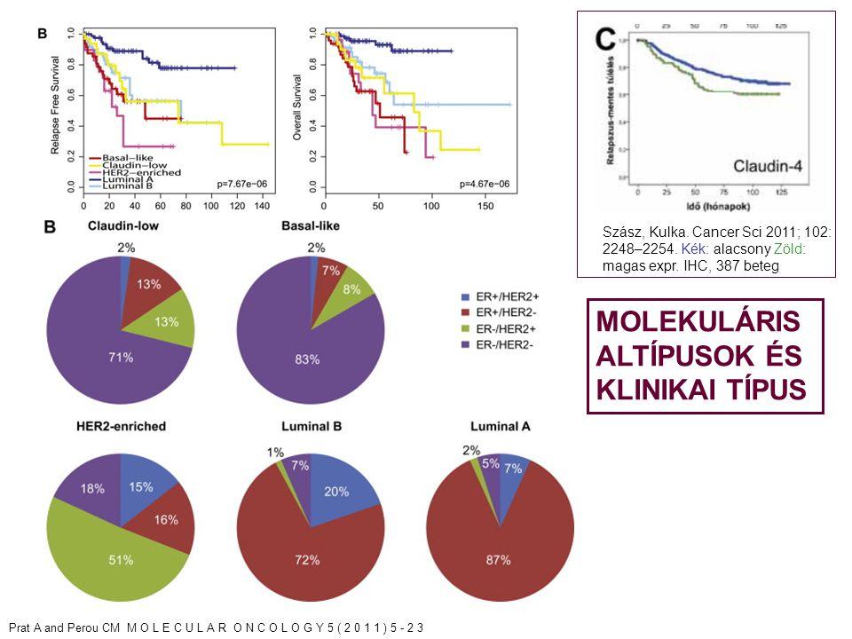 LUMINALIS A TP53 TP53 mut (12%), MDM2 szerzés(14%) PIK3CA/PTEN PIK3CA mut (49%), PTEN mut/vesztés (13%) INPP4B vesztés (9%) RB1 CyclinD1 ampl (29%), CDK4 szerzés (14%), CDK2C alacsony expr, RB1 fokozott expr Kópiaszám többnyire diploid; 1q,8q,8p11 szerzés, 8p, 16q vesztés 11q13.3 ampl (24%) DNS mutációk PIK3CA (49%), TP53 (12%), GATA3 (14%), MAP3K1 (14%) DNS metiláció - LUMINALIS B TP53 TP53 mut (32%), MDM2 szerzés (31%) PIK3CA/PTEN PIK3CA mut (32%), PTEN mut/vesztés (24%) INPP4B vesztés (16%) RB1 CyclinD1 ampl (58%), CDK4 szerzés (25%) Kópiaszám Többnyire aneuploid, sok eset fokális amplifikációkkal 1q,8q,8p11 szerzés 8p,16q vesztés 11q13.3 ampl (51%) 8p11.23 ampl (28%) DNS mutációk TP53 (32%), PIK3CA (32%), MAP3K1 (5%) DNS metiláció hypermetilált alcsoport BASAL-LIKE TP53 TP53mut (84%) MDM2 szerzés (14%) PIK3CA/PTEN PIK3CA mut (7%), PTEN mut/vesztés (35%) INPP4B vesztés (30%) RB1 RB1 mut/vesztés (20%), Cyclin E1amp (9%) CDKN2A fokozott expr, RB1 alacsony expr, Basalis, proliferáló Kópiaszám Többnyire aneuploid, fokozott genom instabilitás 1q,10p szerzés, 8p,5q vesztés, MYC fokális szerzés (40%) DNS mutáció TP53 (84%), PIK3CA (7%) DNS metiláció hypometilált HER2E TP53 TP53mut (75%) MDM2 szerzés (30%) PIK3CA/PTEN PIK3CA mut (42%), PTEN mut/vesztés (19%) INPP4B vesztés (30%) RB1 CyclinD1 ampl (38%), CDK4 szerzés (24%) Kópiaszám Többnyire aneuploid, fokozott genom instabilitás 1q,8q szerzés, 8p vesztés, ERBB2 ampl (71%) DNS mutációk TP53 (75%), PIK3CA (42%), PIK3R1 (8%) DNS metiláció -