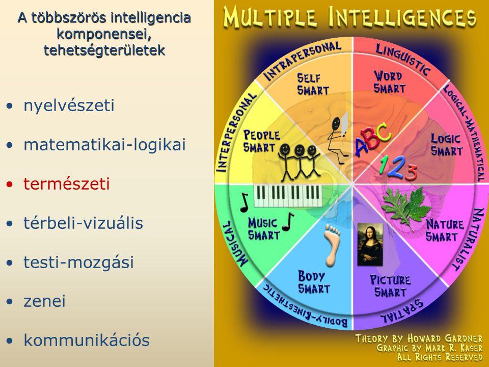 A többszörös intelligencia komponensei, tehetségterületek •nyelvészeti •matematikai-logikai •természeti •térbeli-vizuális •testi-mozgási •zenei •kommunikációs