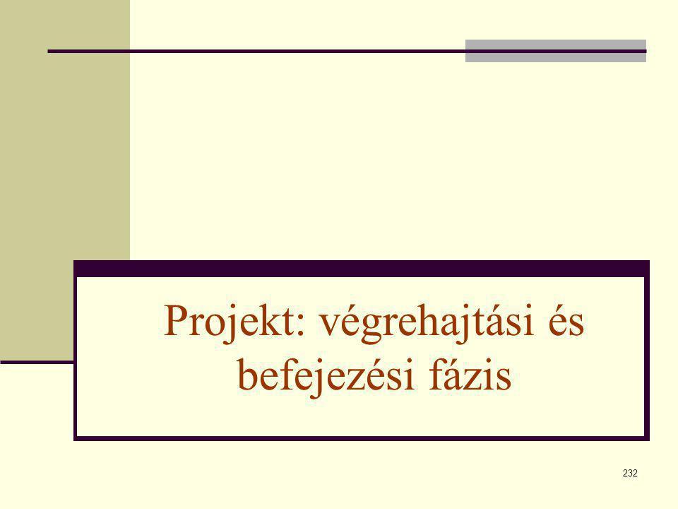232 Projekt: végrehajtási és befejezési fázis