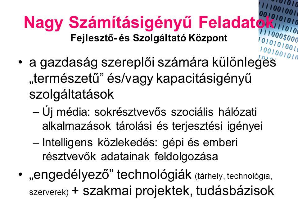 """Nagy Számításigényű Feladatok Fejlesztő- és Szolgáltató Központ •a gazdaság szereplői számára különleges """"természetű és/vagy kapacitásigényű szolgáltatások –Új média: sokrésztvevős szociális hálózati alkalmazások tárolási és terjesztési igényei –Intelligens közlekedés: gépi és emberi résztvevők adatainak feldolgozása •""""engedélyező technológiák (tárhely, technológia, szerverek) + szakmai projektek, tudásbázisok"""