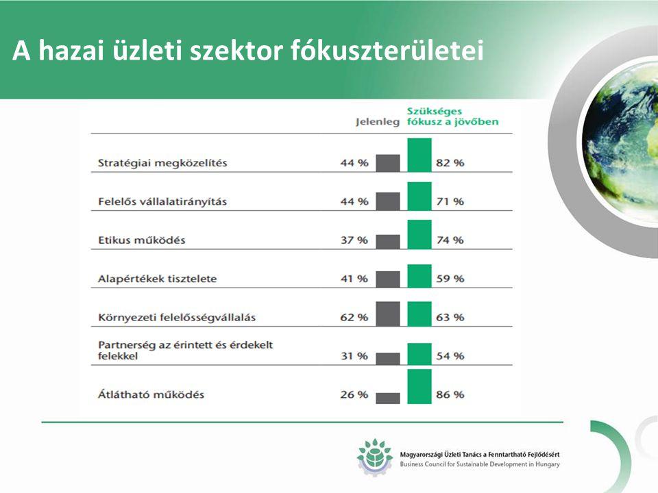 A hazai üzleti szektor fókuszterületei