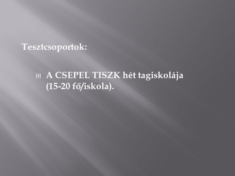 Tesztcsoportok:  A CSEPEL TISZK hét tagiskolája (15-20 fő/iskola).