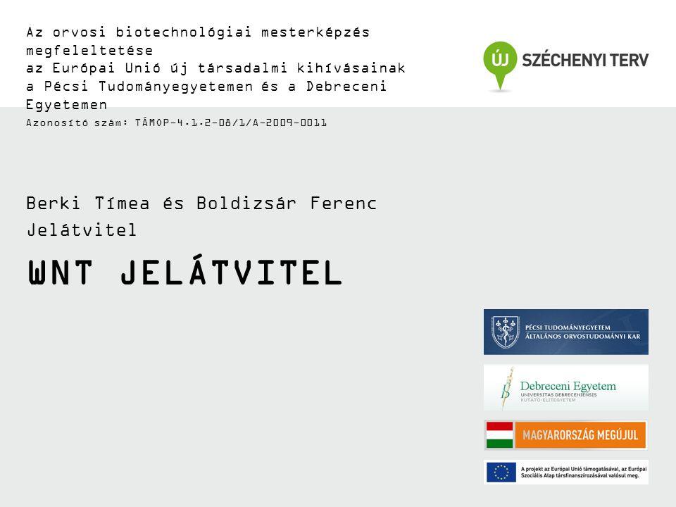 WNT JELÁTVITEL Az orvosi biotechnológiai mesterképzés megfeleltetése az Európai Unió új társadalmi kihívásainak a Pécsi Tudományegyetemen és a Debreceni Egyetemen Azonosító szám: TÁMOP-4.1.2-08/1/A-2009-0011 Berki Tímea és Boldizsár Ferenc Jelátvitel