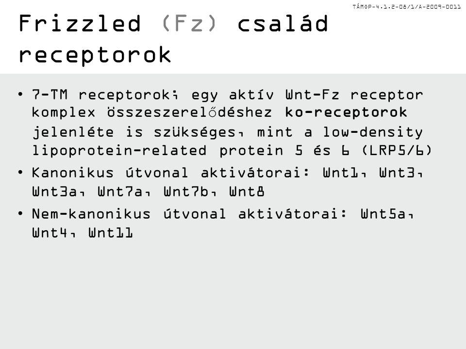 TÁMOP-4.1.2-08/1/A-2009-0011 Milyen betegségekben van szerepe a Wnt jelátvitelnek.
