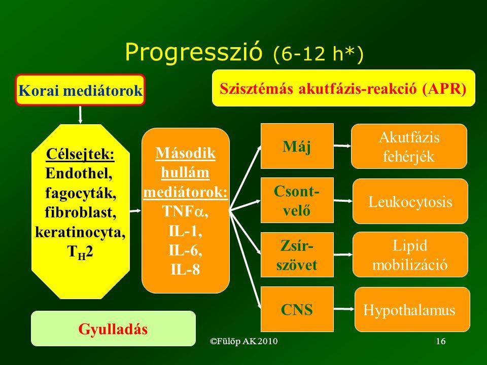 ©Fülöp AK 201016 Progresszió (6-12 h*) Korai mediátorok Célsejtek: Endothel, fagocyták, fibroblast, keratinocyta, T H 2 Második hullám mediátorok: TNF , IL-1, IL-6, IL-8 Máj Csont- velő Zsír- szövet CNS Szisztémás akutfázis-reakció (APR) Akutfázis fehérjék Leukocytosis Lipid mobilizáció Hypothalamus Gyulladás