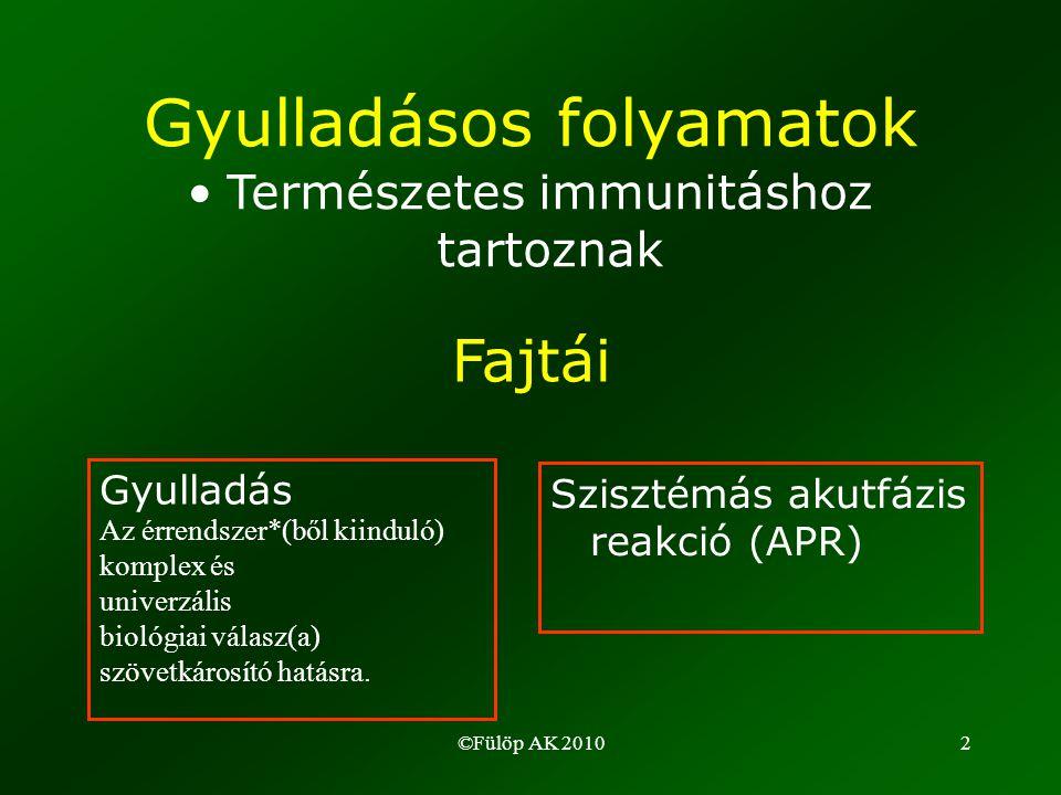 ©Fülöp AK 20102 Gyulladásos folyamatok •Természetes immunitáshoz tartoznak Fajtái Gyulladás Az érrendszer*(ből kiinduló) komplex és univerzális biológiai válasz(a) szövetkárosító hatásra.