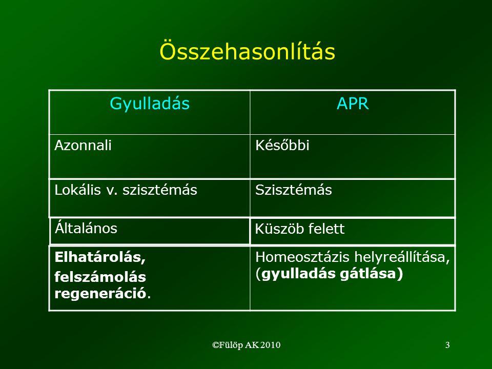 ©Fülöp AK 201034 Az APP-k funkciói (1) •véralvadás: fibrinogén •opszonizáció: CRP (C-reaktív protein) –Autoantigének –Bakt.