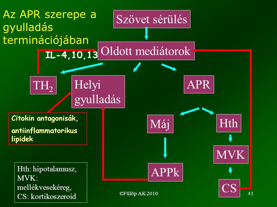 ©Fülöp AK 201041 Máj Hth APPkAPPk MVK CS Az APR szerepe a gyulladás terminációjában Szövet sérülés Oldott mediátorok Helyi gyulladás APR TH 2 IL-4,10,13 Citokin antagonisák, antiinflammatorikus lipidek Hth: hipotalamusz, MVK: mellékvesekéreg, CS: kortikoszeroid