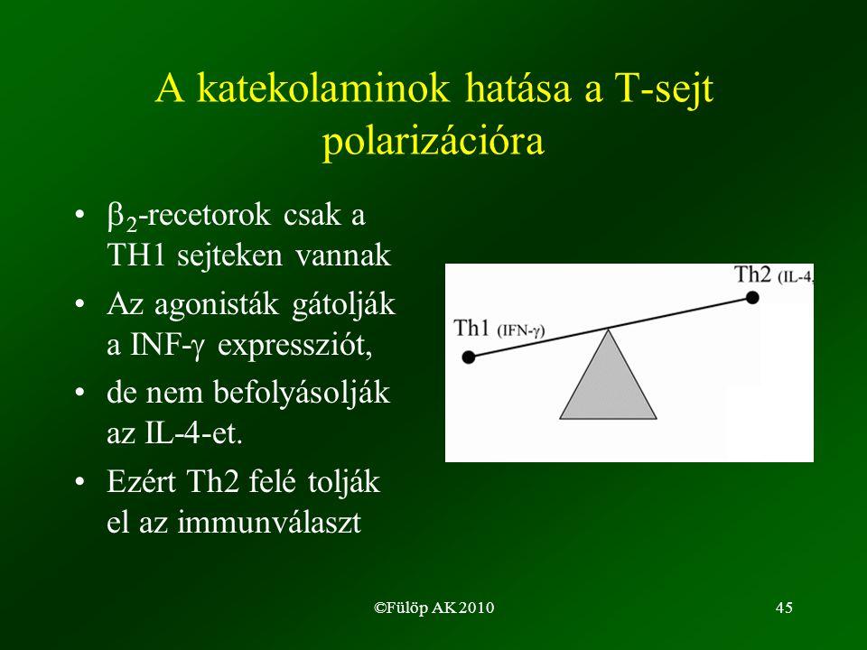 ©Fülöp AK 201045 A katekolaminok hatása a T-sejt polarizációra •  2 -recetorok csak a TH1 sejteken vannak •Az agonisták gátolják a INF-  expressziót, •de nem befolyásolják az IL-4-et.