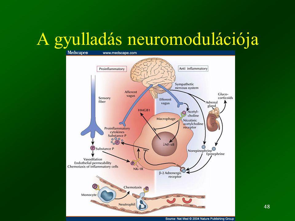 ©Fülöp AK 201048 A gyulladás neuromodulációja