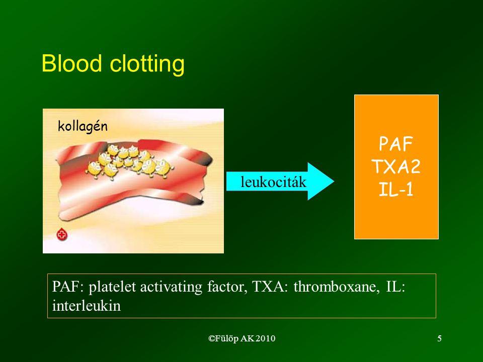 ©Fülöp AK 20106 Iniciáció (0-6 h*) Immun komplex Vérzés & Véralvadás Vér- lemezke aktiváció IL-1 Bakterium Komplement aktiváció C5a C3a Necrosis Fagocita aktiváció ROI TNF- , IL-1 lipidek Vírus-fertőzött sejt Korai pro-inflammatorikus mediátorok példái