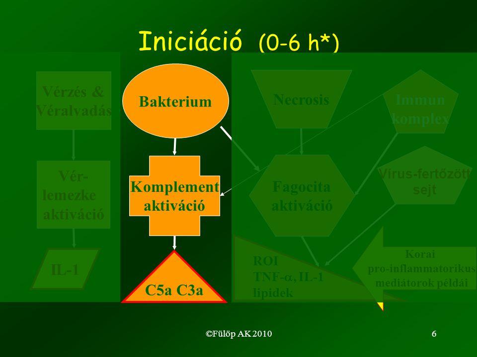 27 A gyulladásos citokinek metabolikus hatásai LPL: Lipoprotein lipase, NF: nuclear factor